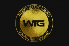 world tricking games (14)