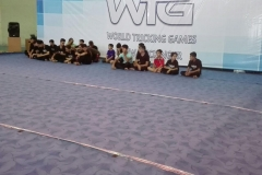 world tricking games (40)