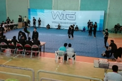 world tricking games (47)