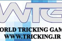 world tricking games (54)