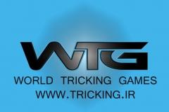 world tricking games (59)