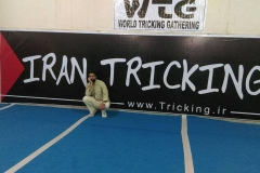 world tricking games (67)