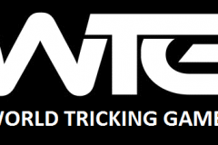 world tricking games (1)