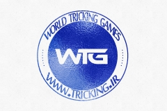 world tricking games (15)