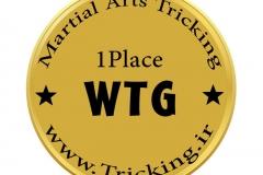 world tricking games (57)